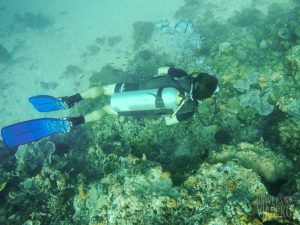 Responsible diving - Philippines
