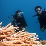 Scuba diving in Eilat, Traveling to Eilat in Israel